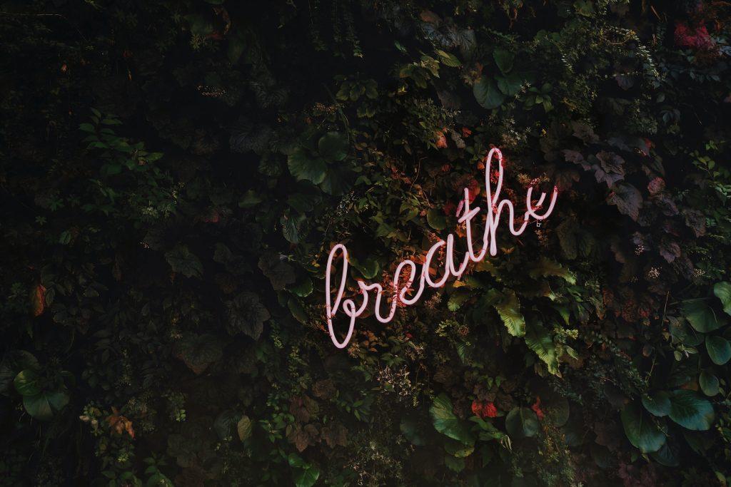 Le mot breath en néon sur un mur végétal