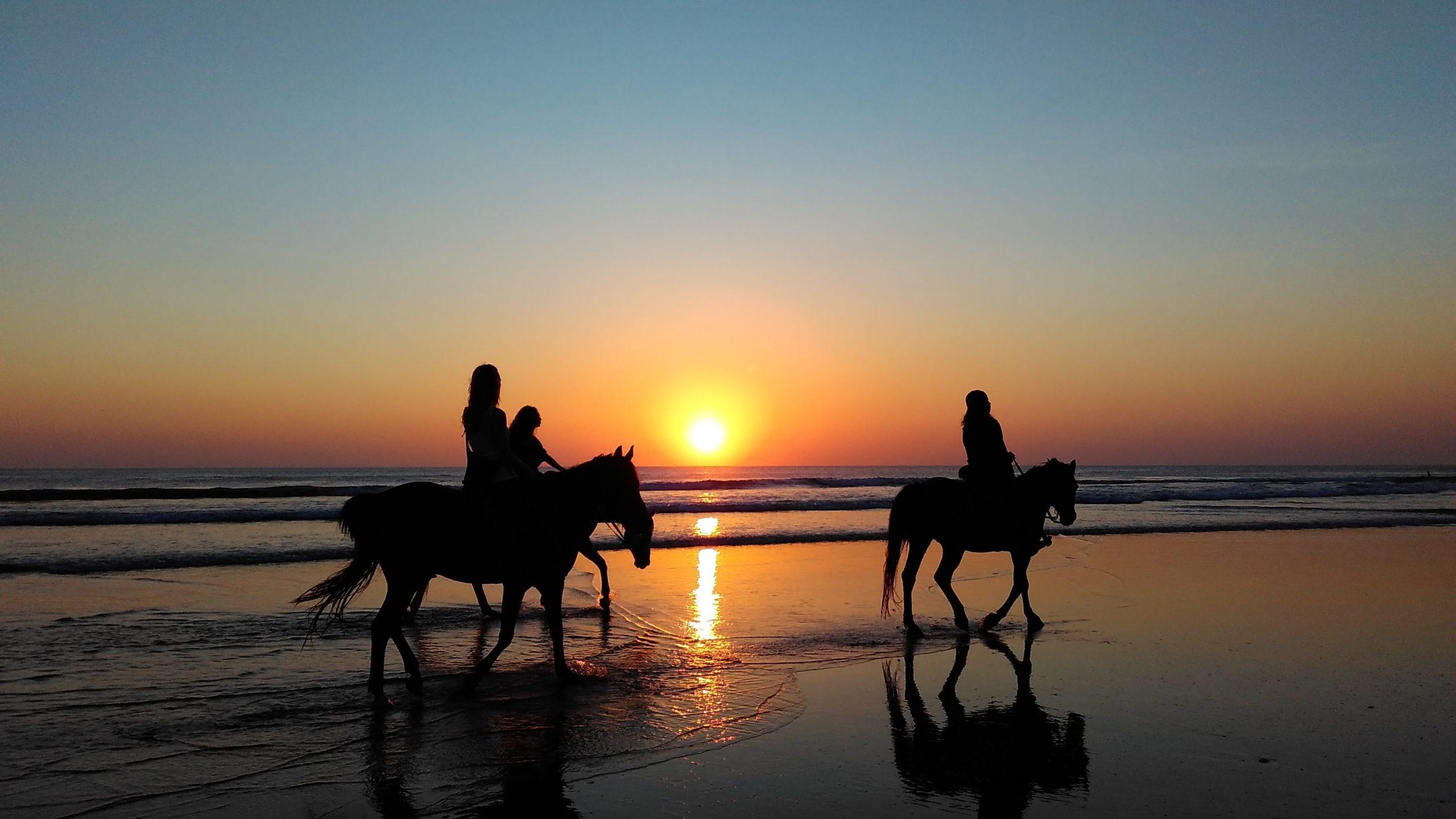 Découvrir l'équitation le temps d'un week-end