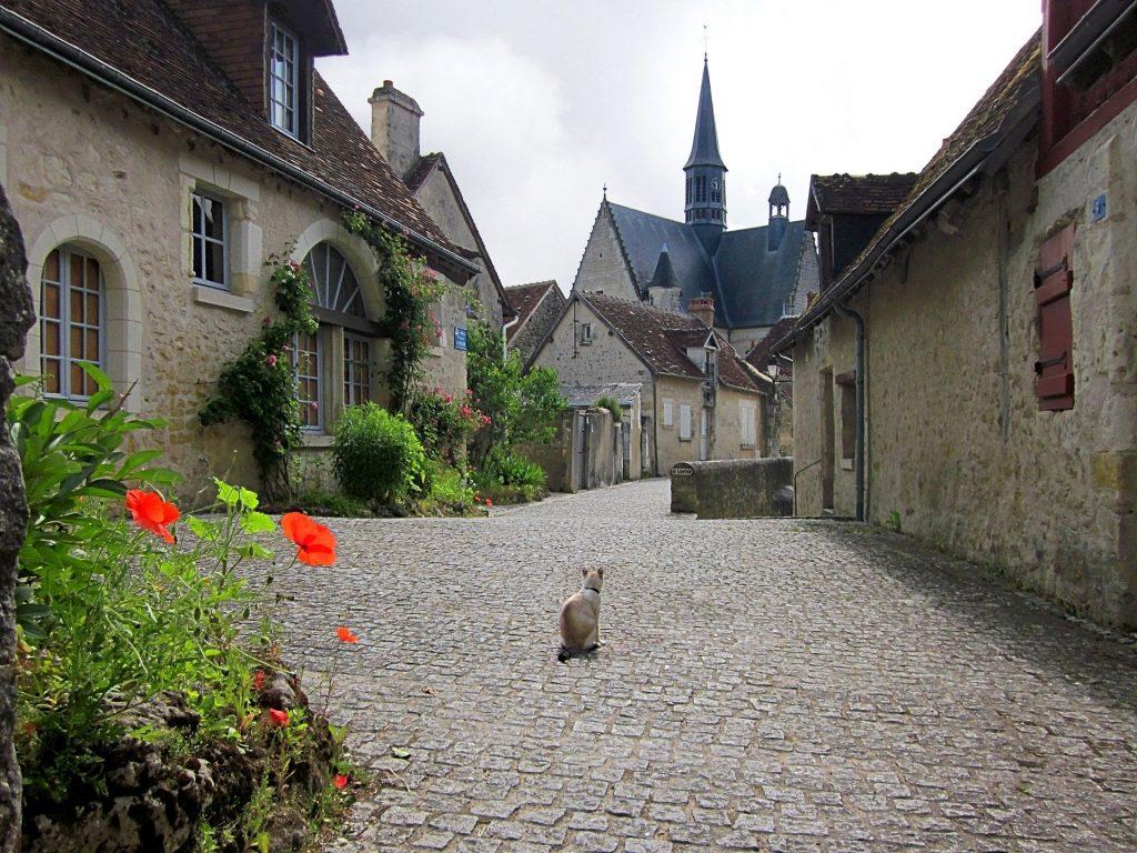 Chat assis au milieu d'une ruelle pavée du village de Montrésor